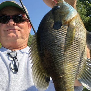 Image #3529 from GreatAnglers.com