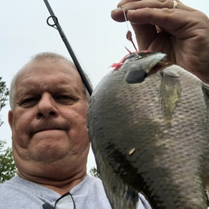 Image #3533 from GreatAnglers.com