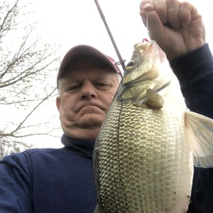 Image #4028 from GreatAnglers.com