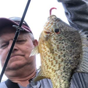 Image #4094 from GreatAnglers.com