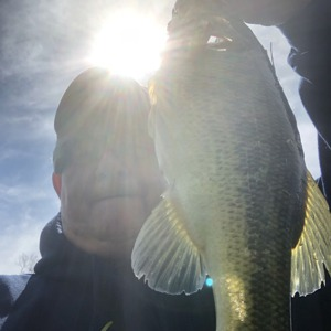 Image #4165 from GreatAnglers.com