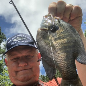 Image #4792 from GreatAnglers.com